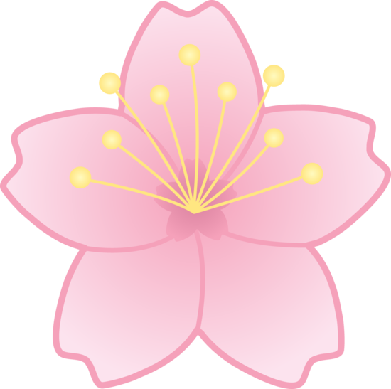 Free clip art of a pink cherry blossom flower.