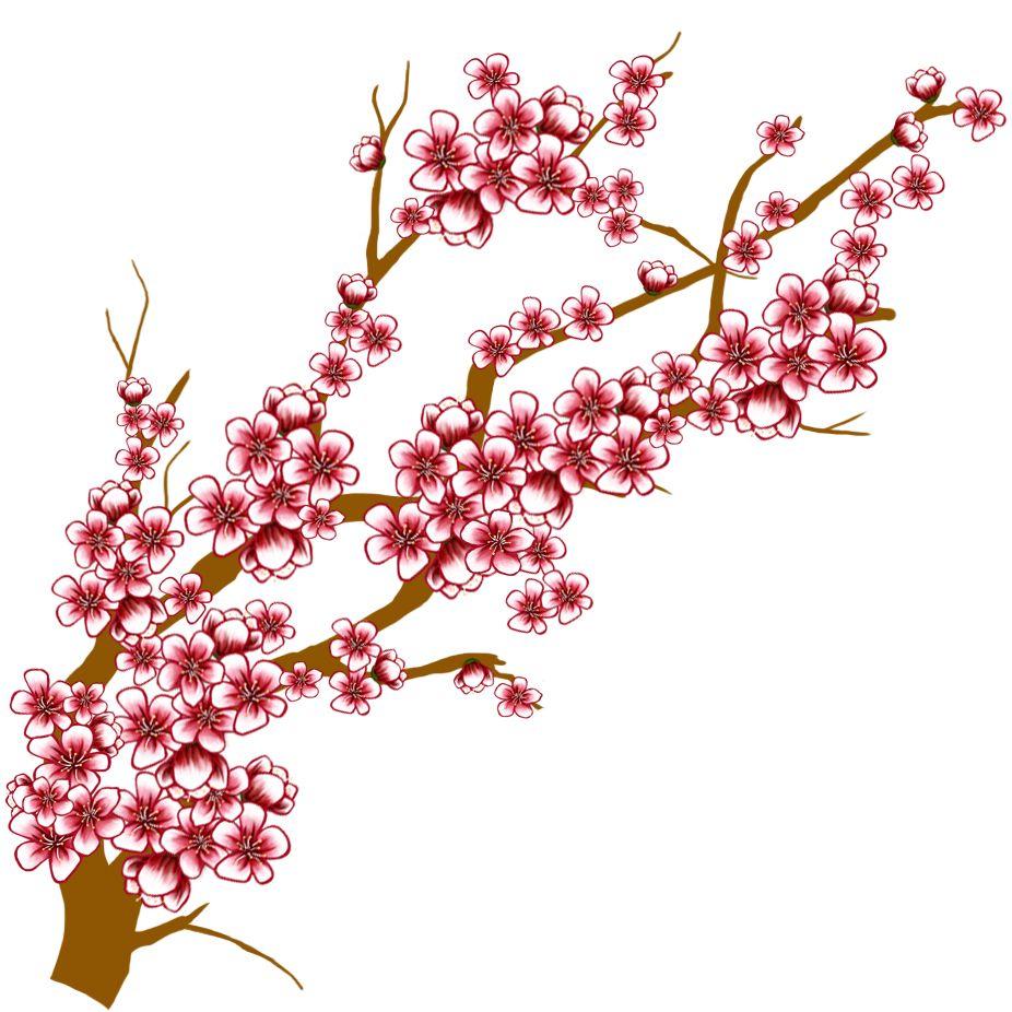 Images For > Sakura Tree Branch Drawing.