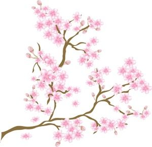 80 best images about Cherry blossom vector clipart png. on.