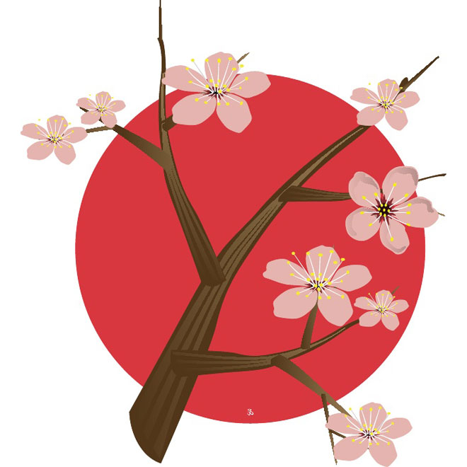 Cherry Blossom for Japan vector.