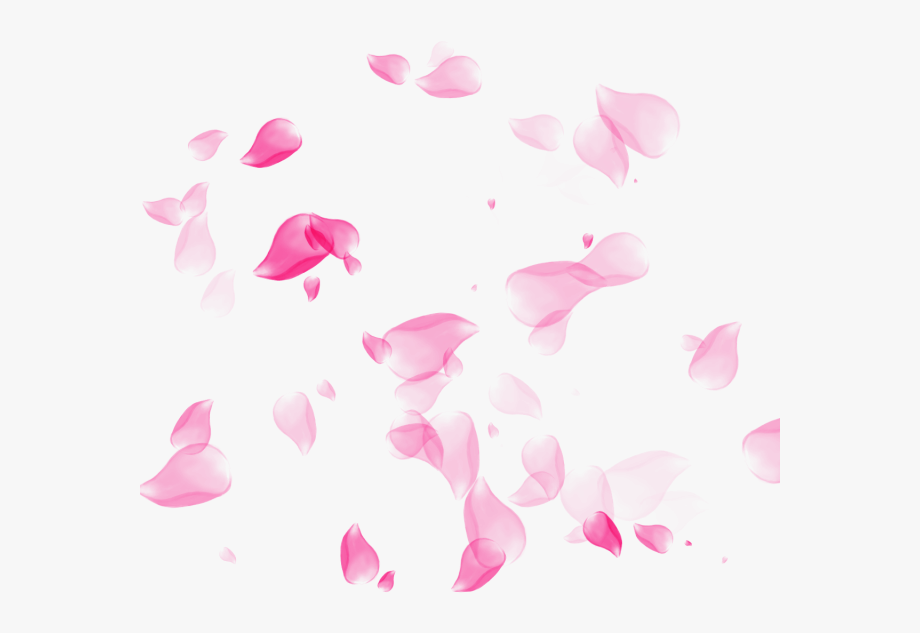 Cherry Blossom Petal Png.