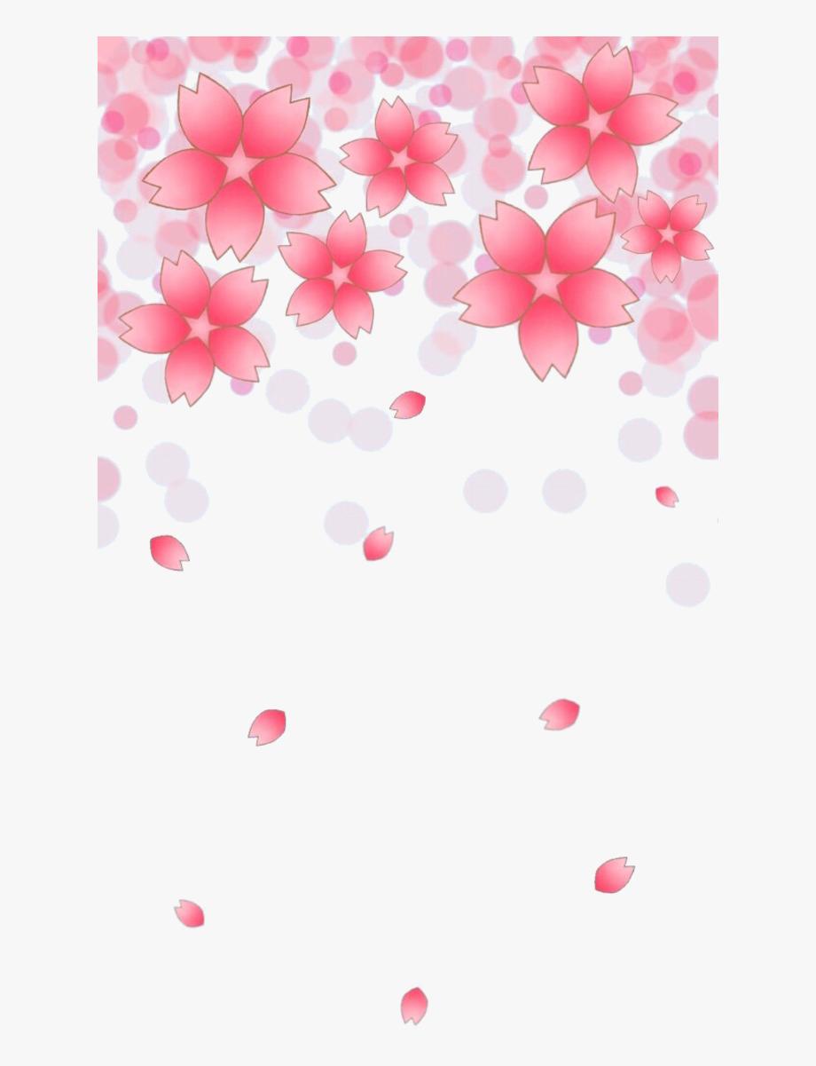 Cherry Blossom Petals Falling Png.