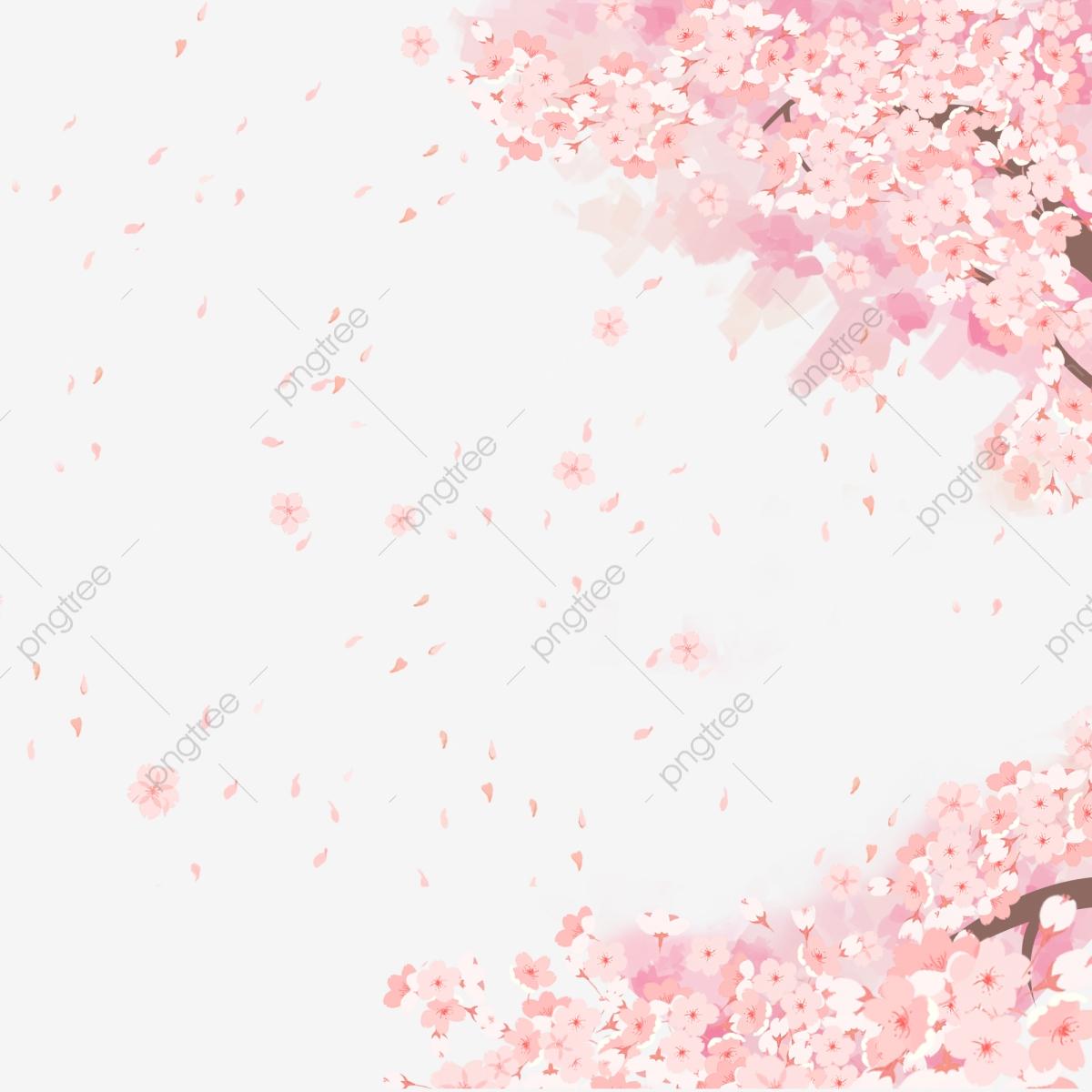 Cherry Blossom Romantic Sakura Petal Cherry Blossom Petals, Cherry.