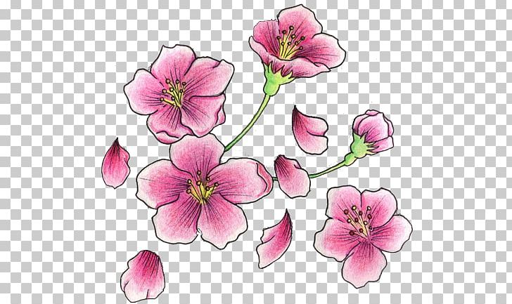 Cherry Blossom Tattoo Flash PNG, Clipart, Art, Blossom.