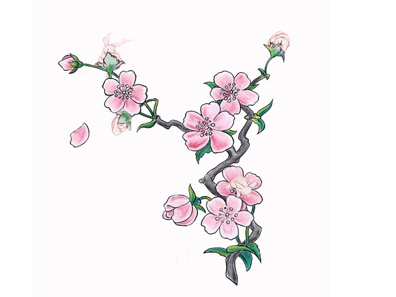 5 New Cherry Blossom Tattoo Designs.