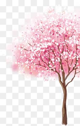 Cherry Blossom Tree Png, Vectors, PSD, A #191098.