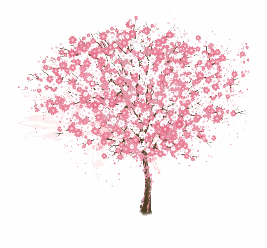 Cherry Blossom, Tree, Encapsulated Postscript, Pink,.