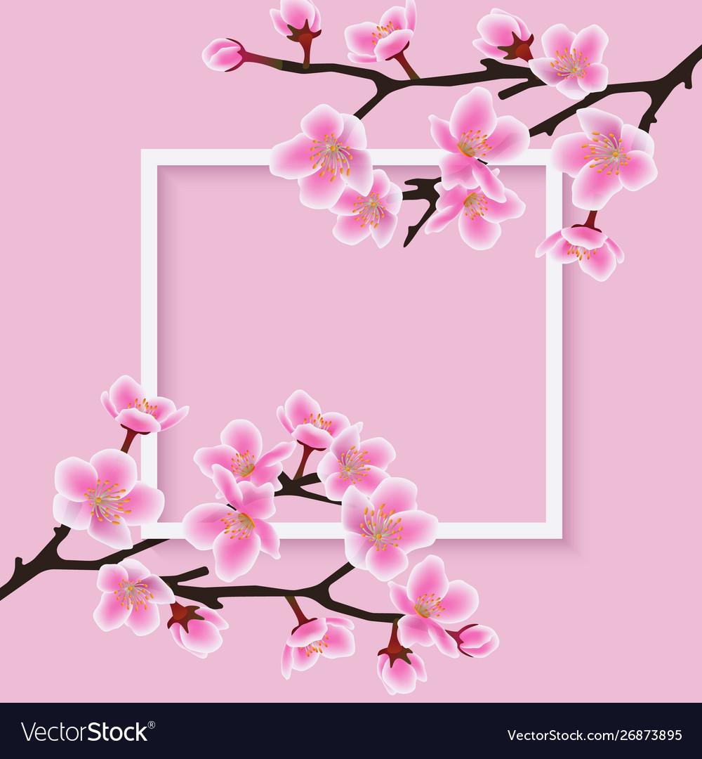 Square frame with a sakura or cherry blossom.