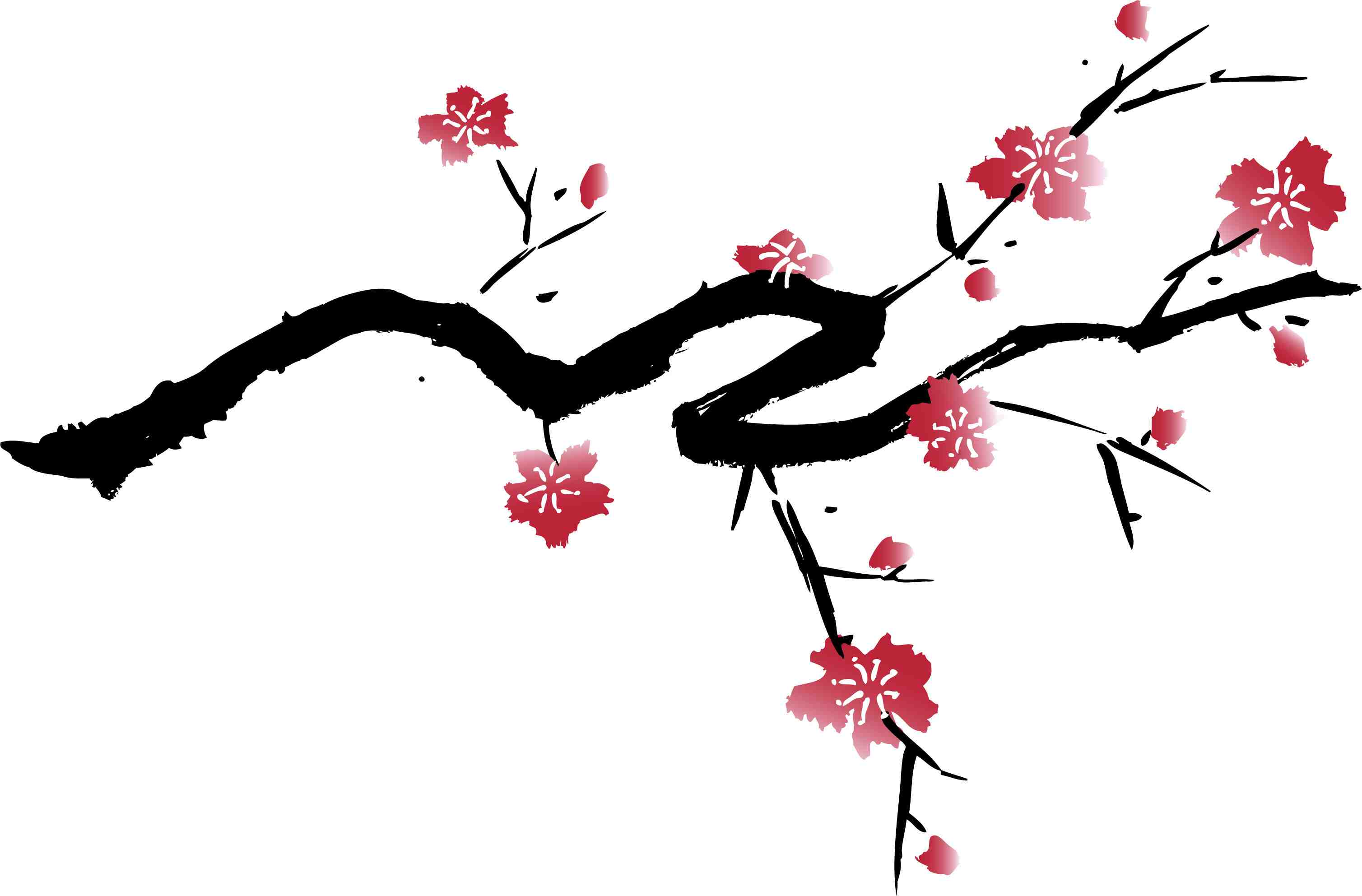 Cherry blossom clipart with black background.