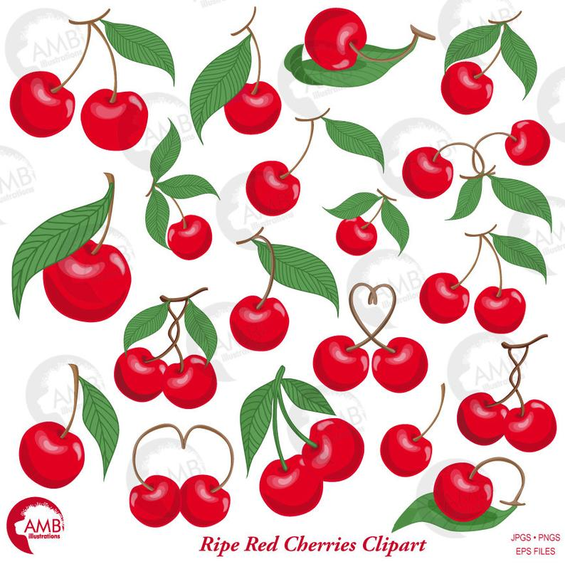 Cherry Clipart, cherries vector, Berry cherry clipart AMB.