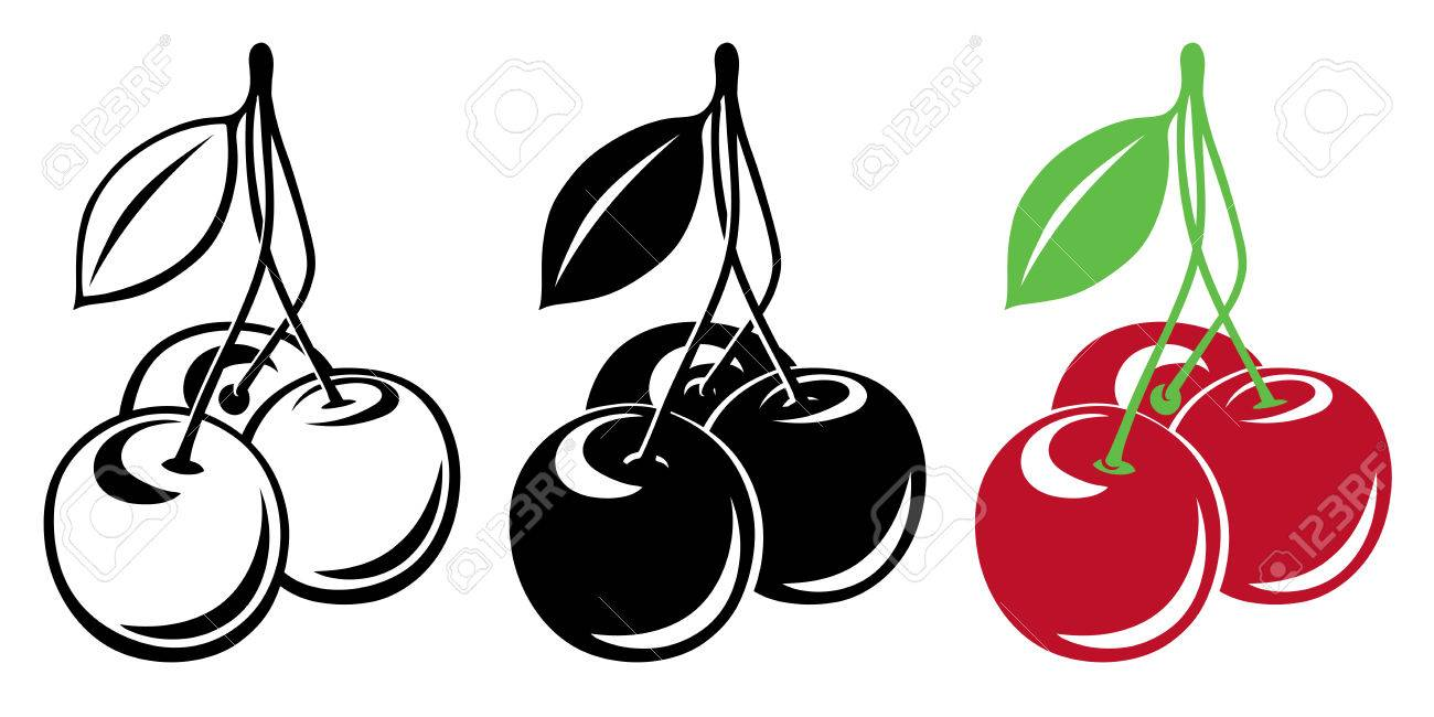 Three vector cherries in color and black and white.