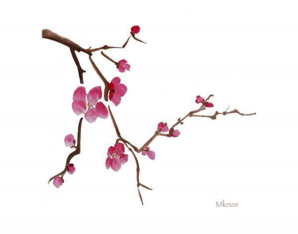 Oriental cherry clipart - Clipground