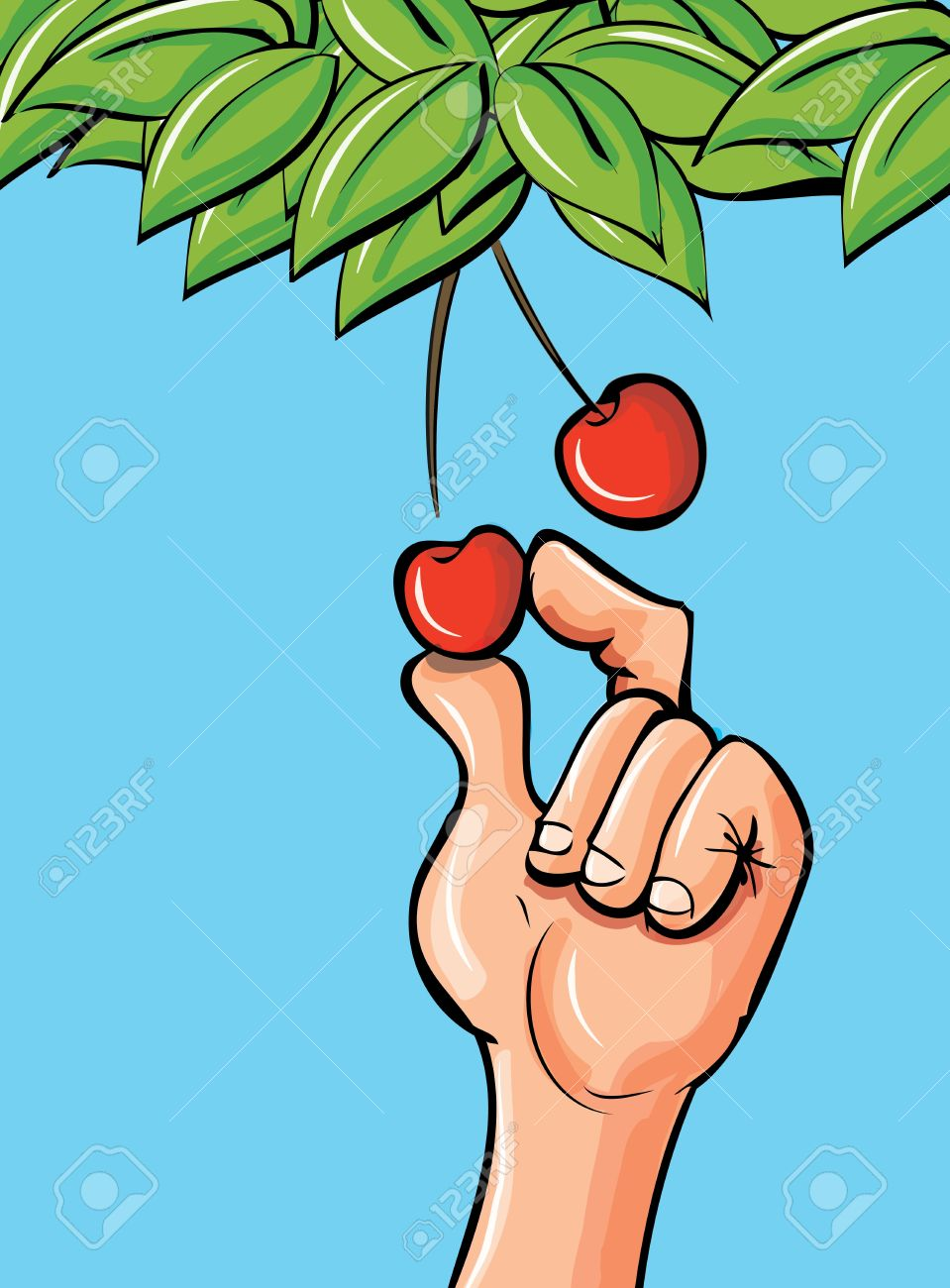 Cartoon Hand Picking A Cherry Of A Leafy Branch Royalty Free.