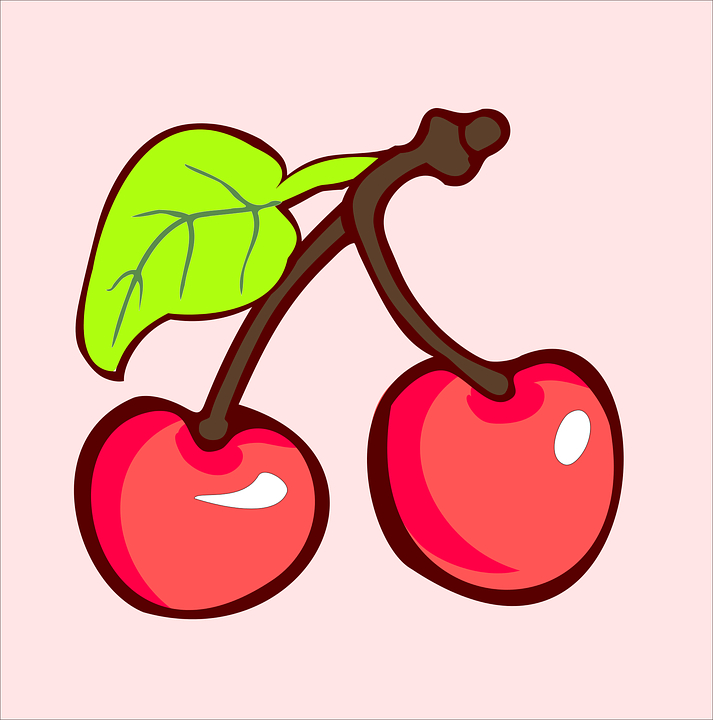 Free vector graphic: Cherry, Harvest, Plant.