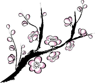 cherry blossom drawing outline.