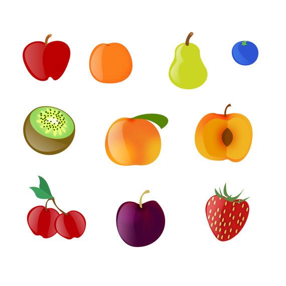 10 Orange Fruit Clipart.