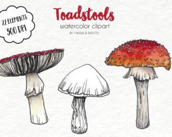 Toadstool clipart.