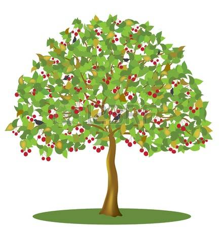 16,324 Cherry Tree Stock Illustrations, Cliparts And Royalty Free.
