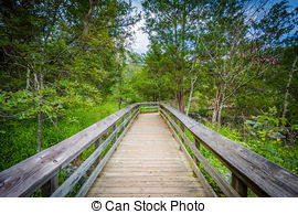 Picture of Boardwalk trail on Olmsted Island at Great Falls.