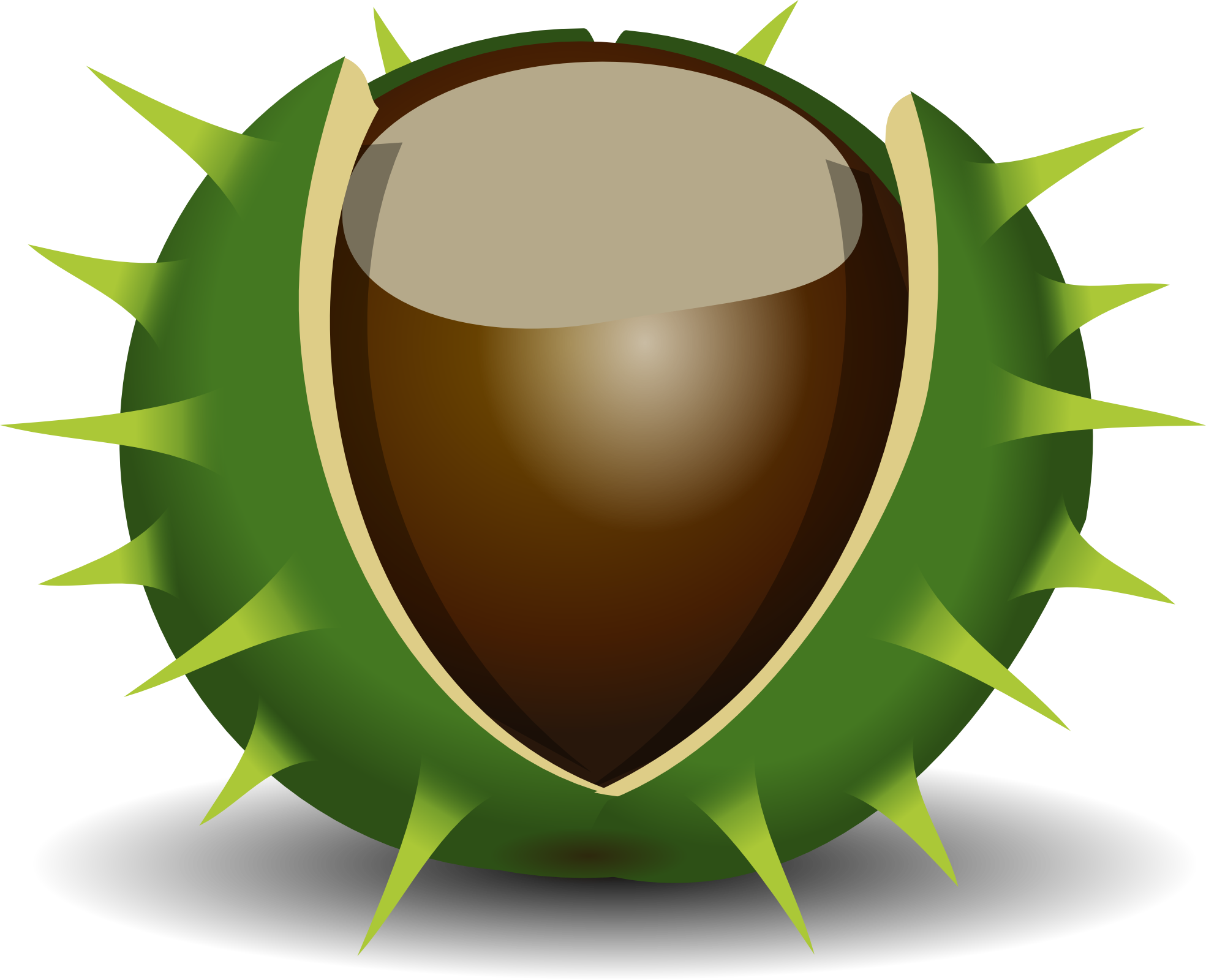 Chestnut Clipart.