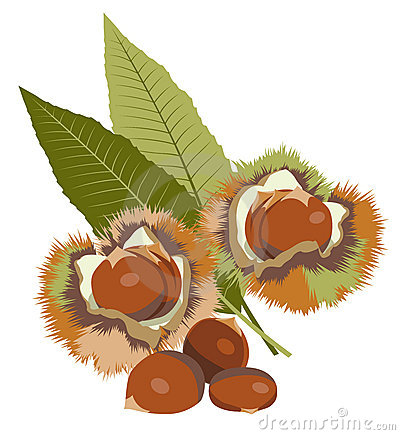 Chestnut Dessert Stock Illustrations.