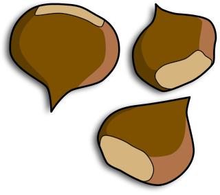 Chestnut Clip Art Download.