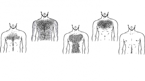 Top five chest hair styles.