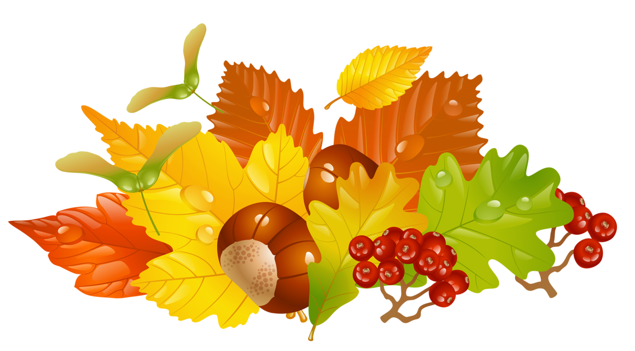 Transparent Fall Leaves and Chestnuts Picture.