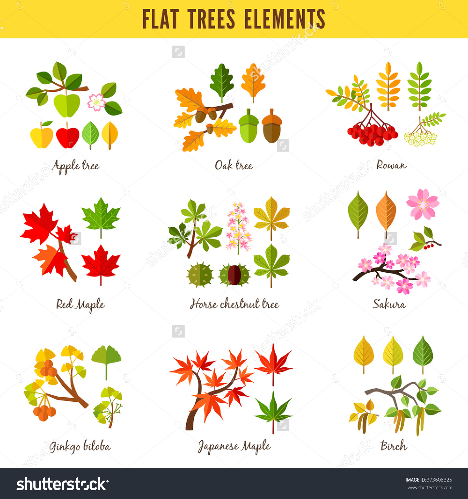 Set Flat Trees Elements Apple Tree Stock Vector 373608325.