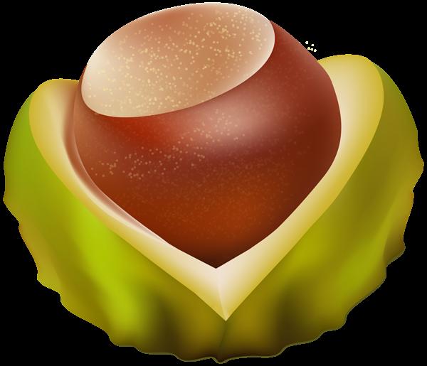 Chestnut PNG Transparent Image.