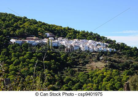 Stock Images of Village & chestnut forest, Pujerra..