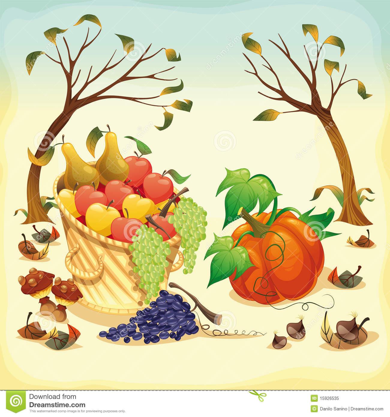 Fruit Chestnut Tree Stock Illustrations.