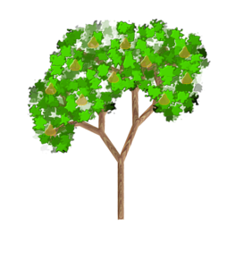 Chestnut Tree Clipart.