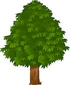 Chestnut trees clipart #11