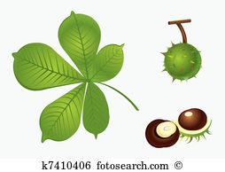 Chestnut tree Clipart and Illustration. 1,743 chestnut tree clip.