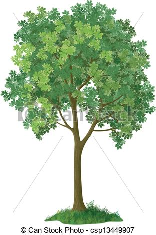Vector Clipart of Chestnut tree. Vector.