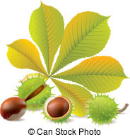 Chestnuts Clipart and Stock Illustrations. 3,382 Chestnuts vector.