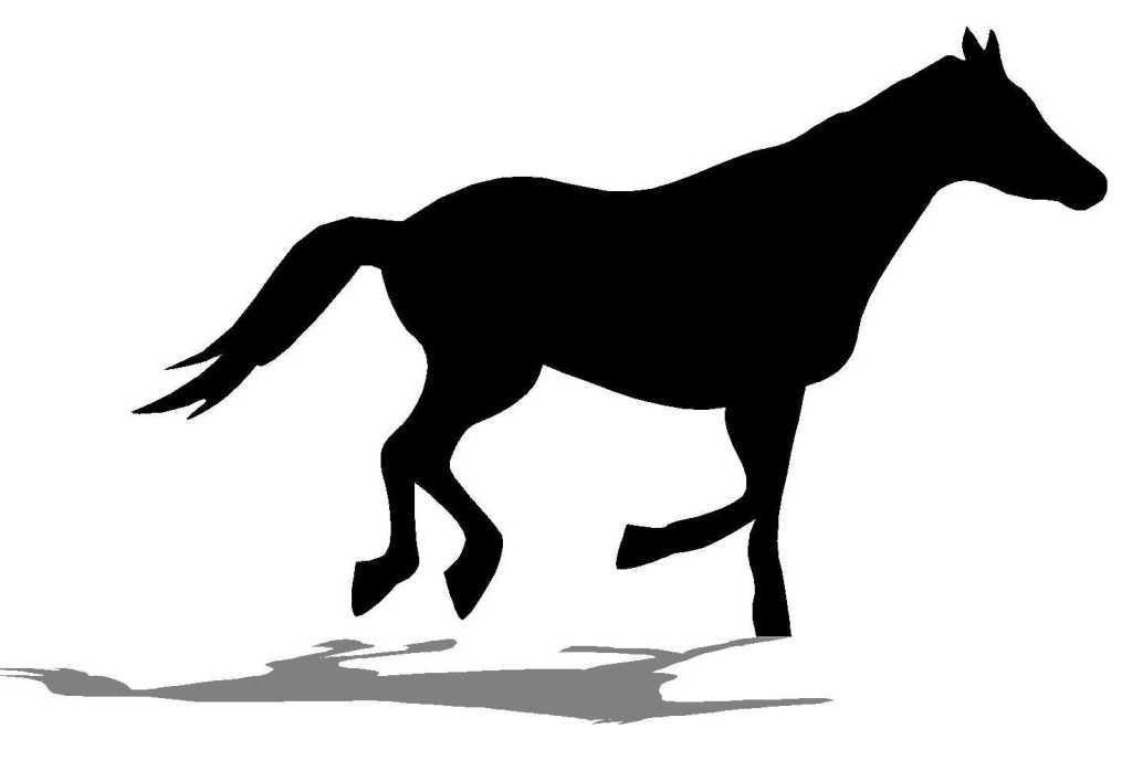 cheval au trot.jpg.