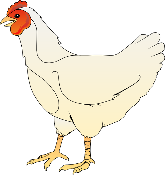 Chicken Clipart.