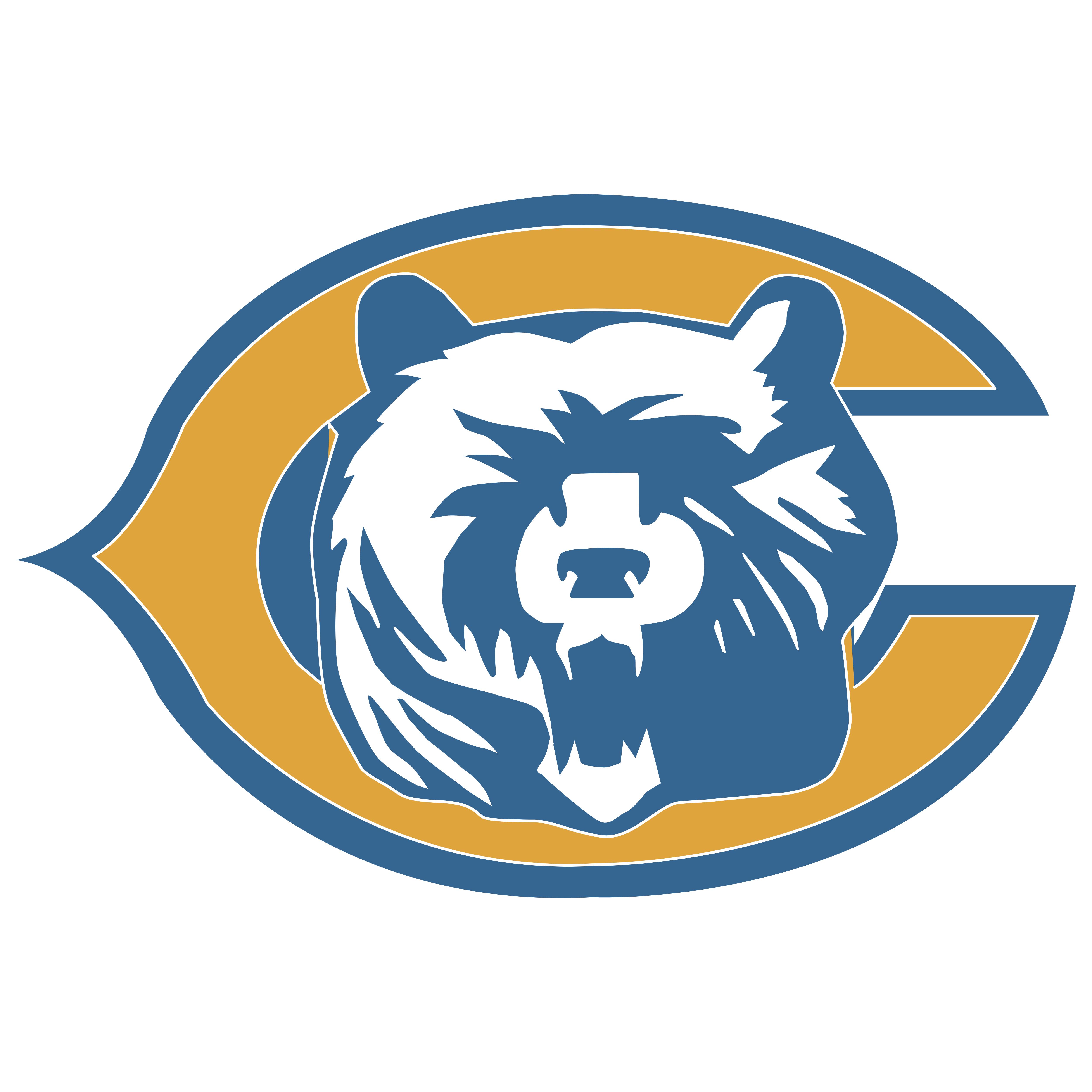 Chicago Bears.
