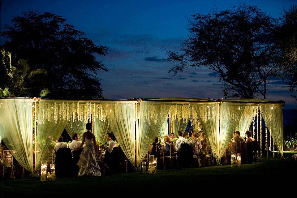 Wedding Chicago Botanic Garden.