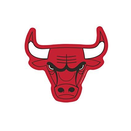 Amazon.com : NBA Chicago Bulls Logo on the Go Go : Sports.
