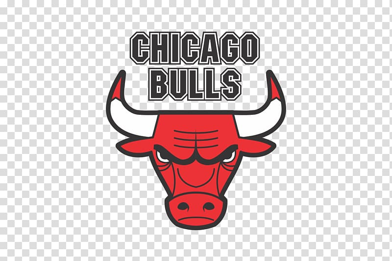 Chicago Bulls logo, United Center Chicago Bulls NBA Phoenix.