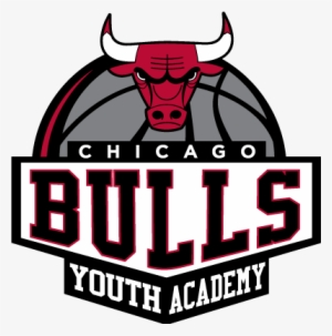 Chicago Bulls PNG Images.