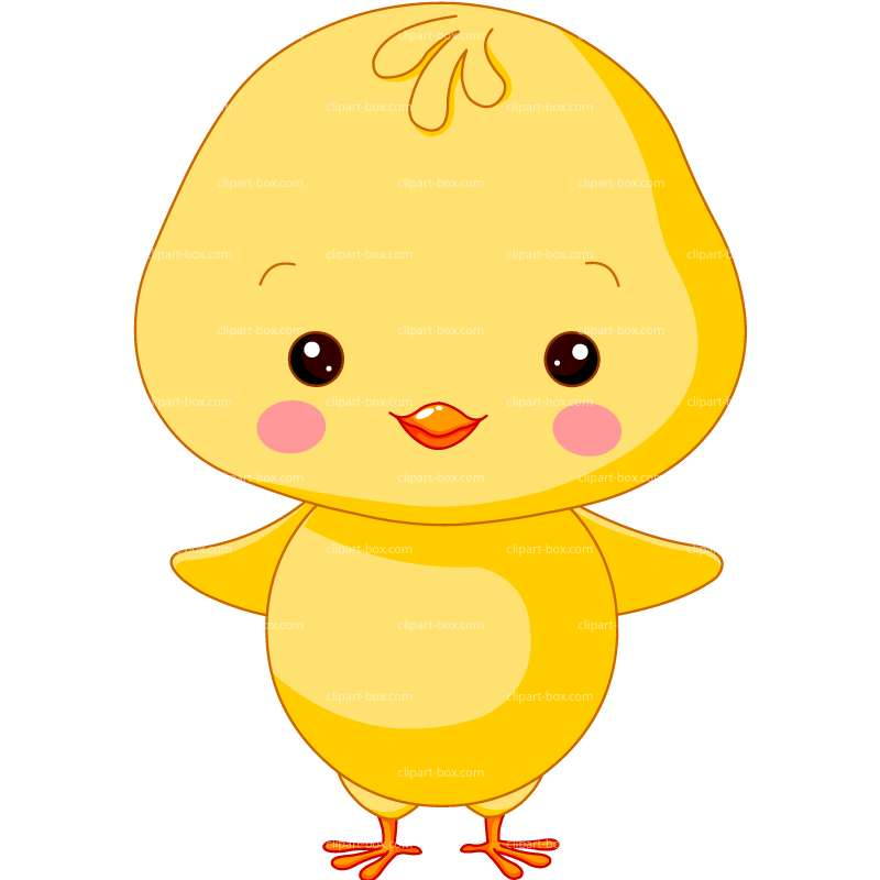 CLIPART FARM CHICK.