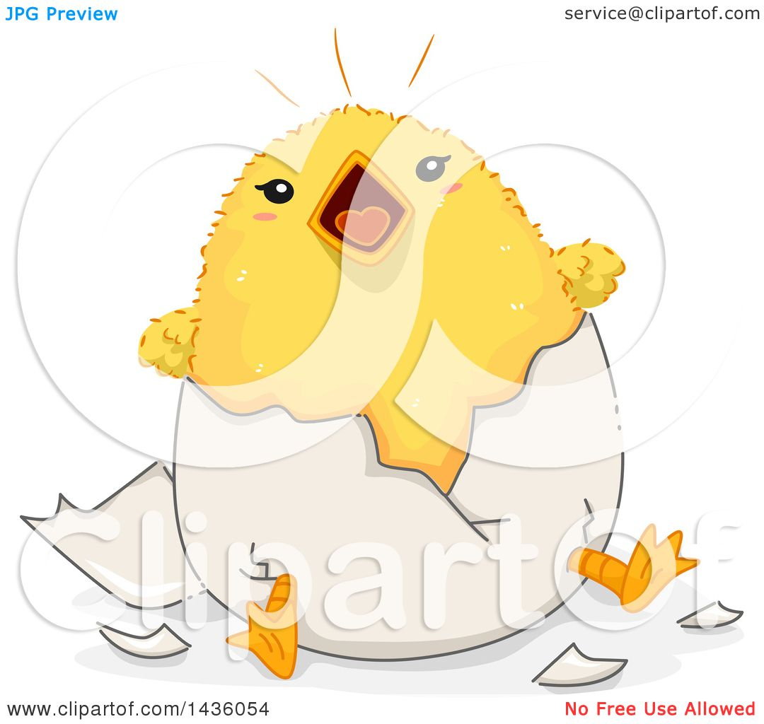Clipart of a Noisy Chick Hatching from an Egg.