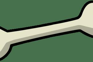 Chicken bone clipart 2 » Clipart Portal.