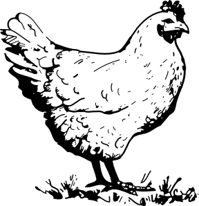 Coloring Chicken Clip art.