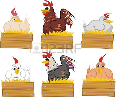 357 Chicken Coop Stock Vector Illustration And Royalty Free.