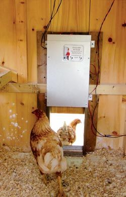 1000+ images about Homesteading.